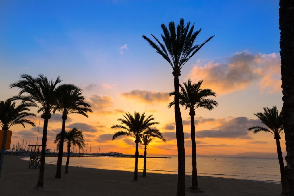 Vakantie El Arenal Boek Voordelig Mallorcavakantie Nl
