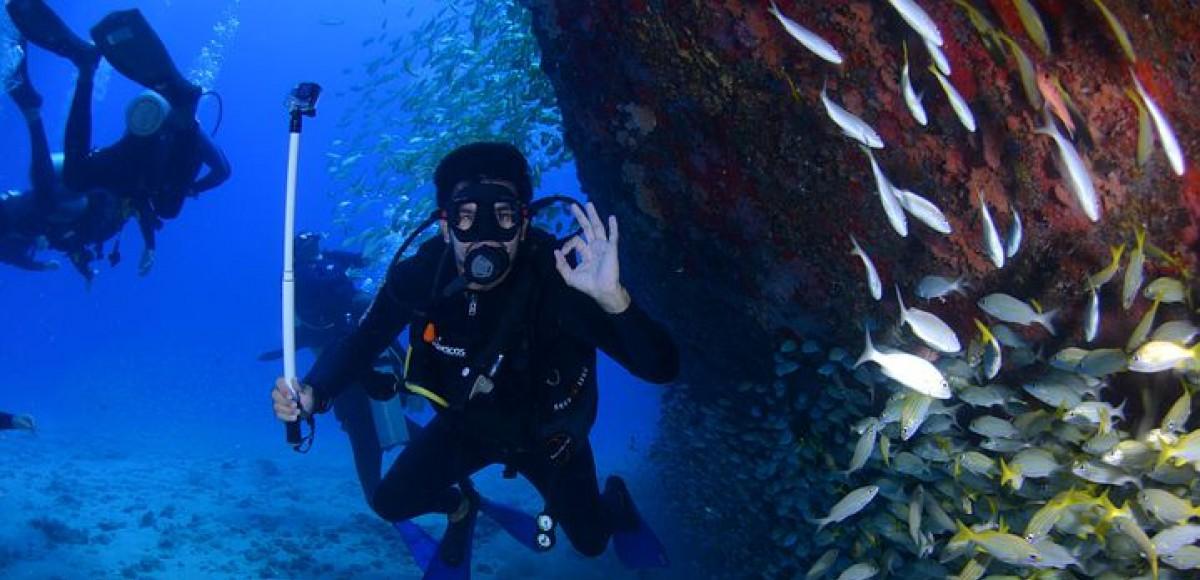 De mooiste duikspots van Mallorca