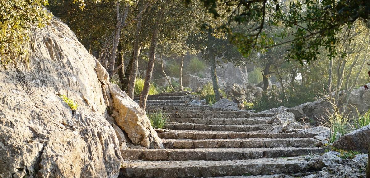 Bezoek de mooiste tuinen op Mallorca
