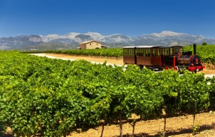 Mooiste wijntours op Mallorca